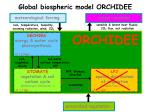global biospheric model orchidee