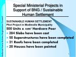 special ministerial projects in support of bng sustainable human settlement