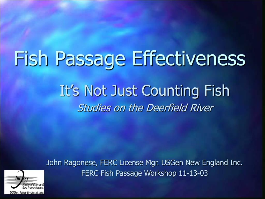 fish passage effectiveness l.