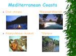 mediterranean coasts6