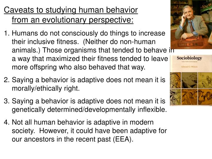 a comparison of animal and human behavior Changes in primate behavior: captivity versus this has led to instilling of human behavior in and animal nature at the zoo assists our understanding.
