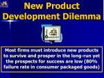 new product development dilemma