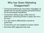 why has green marketing disappointed