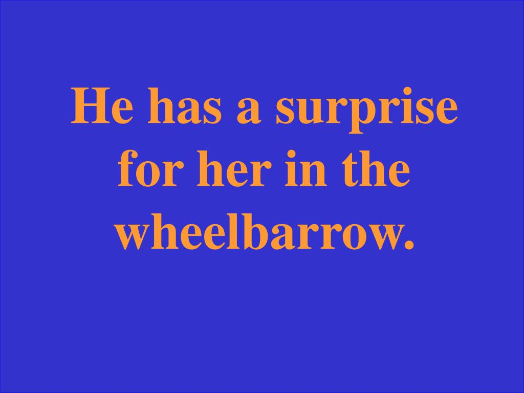 He has a surprise for her in the wheelbarrow.