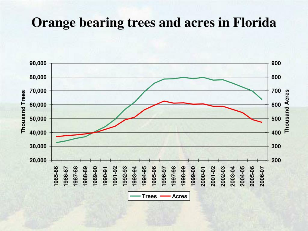 Orange bearing trees and acres in Florida