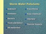 storm water pollutants
