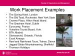 work placement examples