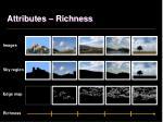 attributes richness