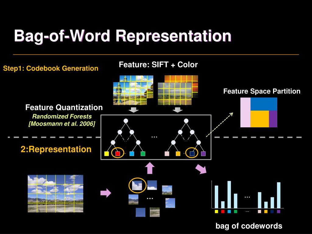 Bag-of-Word Representation