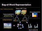 bag of word representation