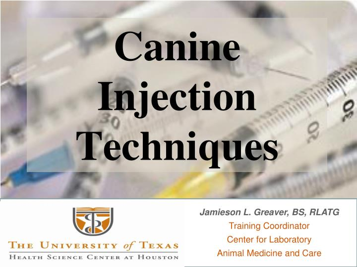canine injection techniques n.