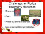 challenges for florida strawberry production