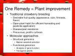 one remedy plant improvement