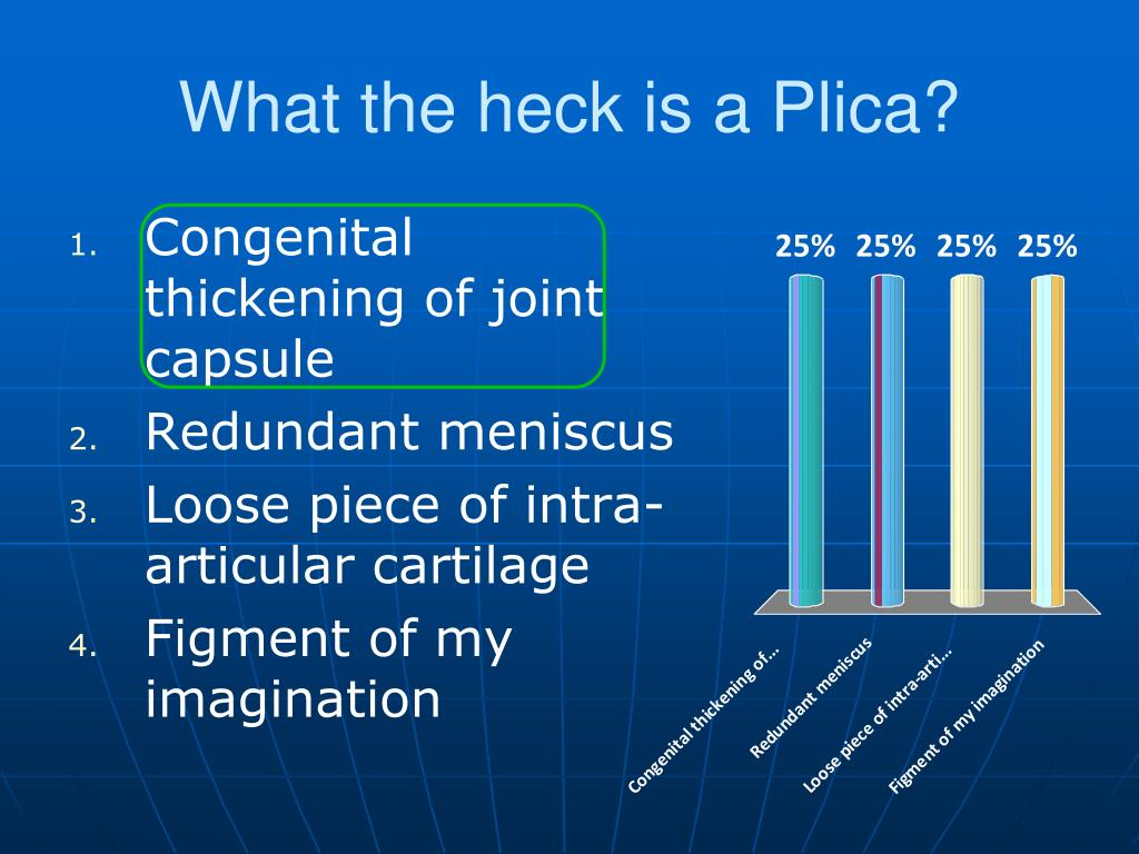 What the heck is a Plica?