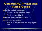 community private and public goods