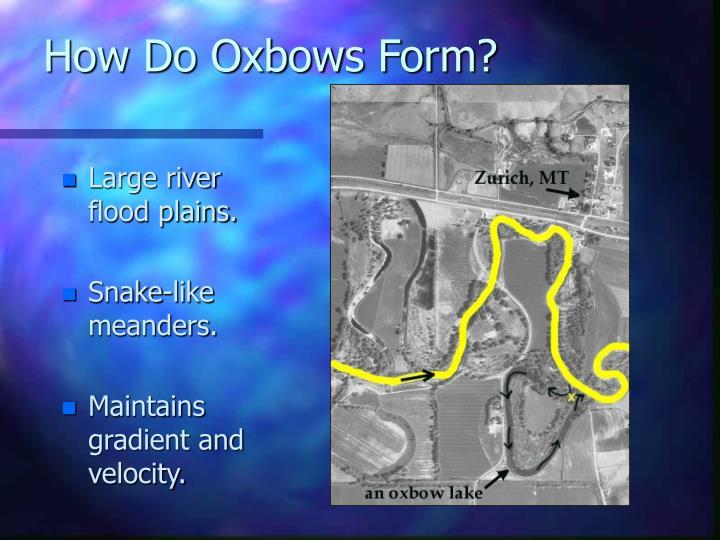 How do oxbows form
