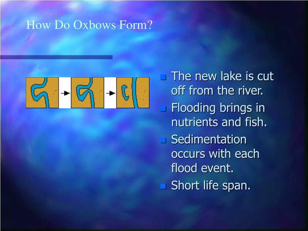 How Do Oxbows Form?