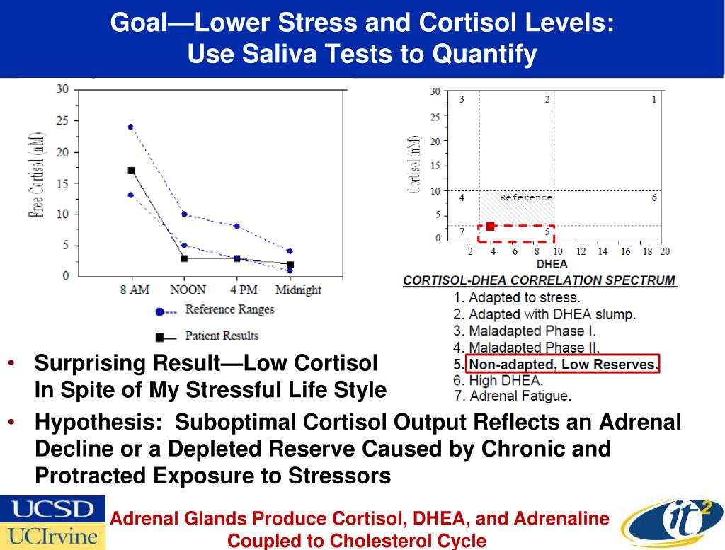 Goal—Lower Stress and Cortisol Levels: