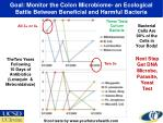 goal monitor the colon microbiome an ecological battle between beneficial and harmful bacteria