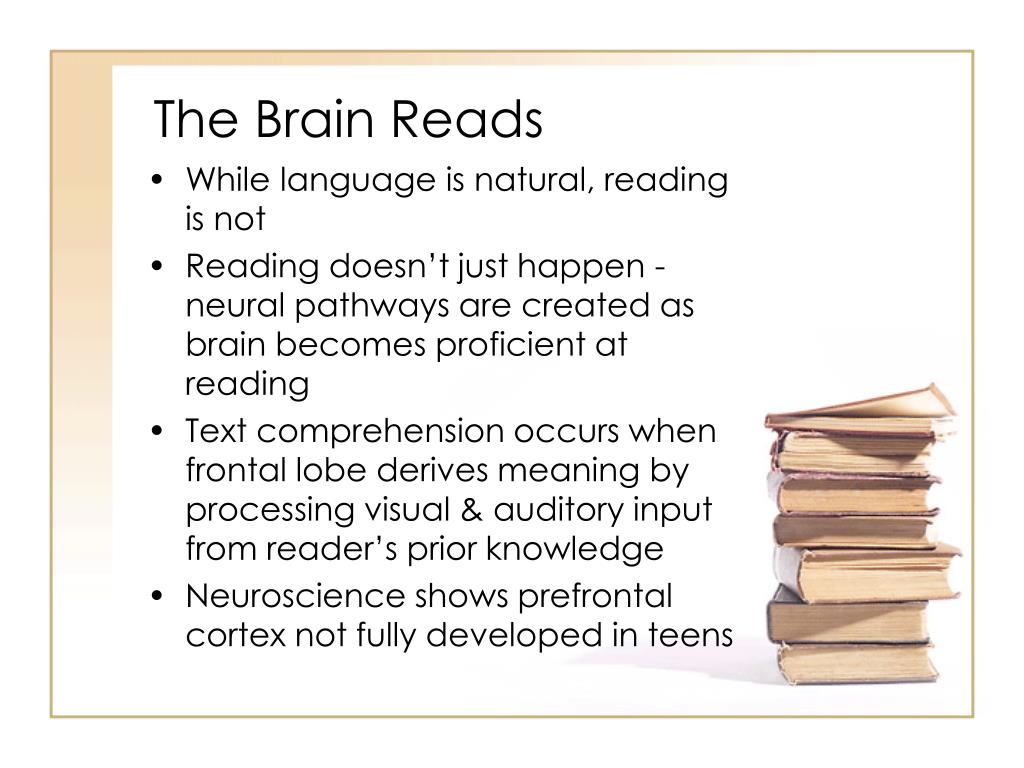 The Brain Reads