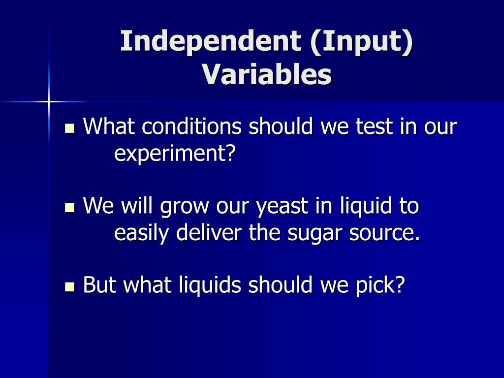 Independent (Input) Variables