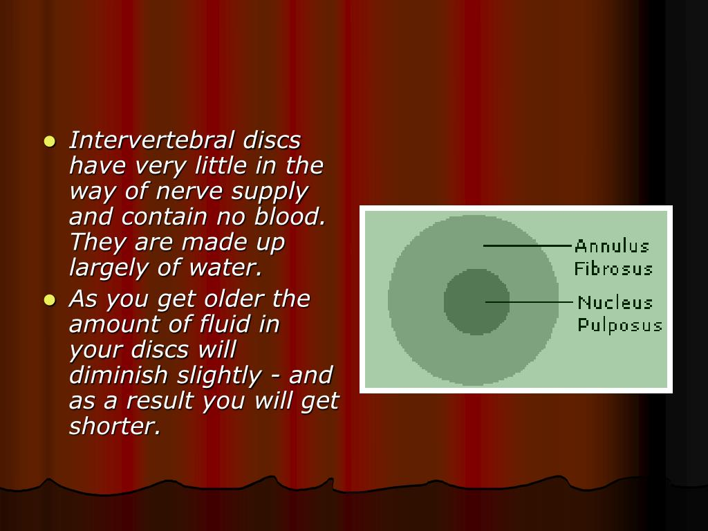 Intervertebral discs have very little in the way of nerve supply and contain no blood. They are made up largely of water.