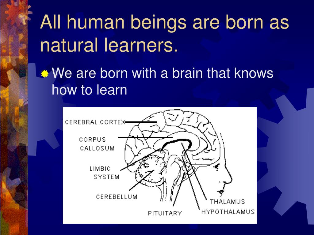 All human beings are born as natural learners.