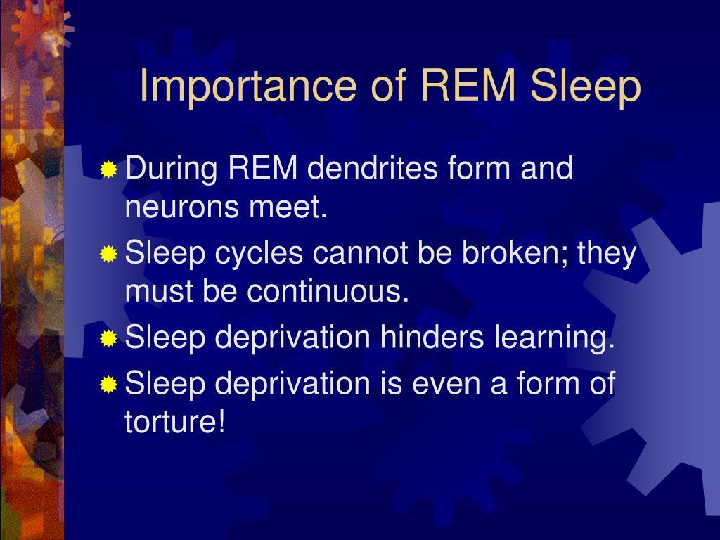 Importance of REM Sleep