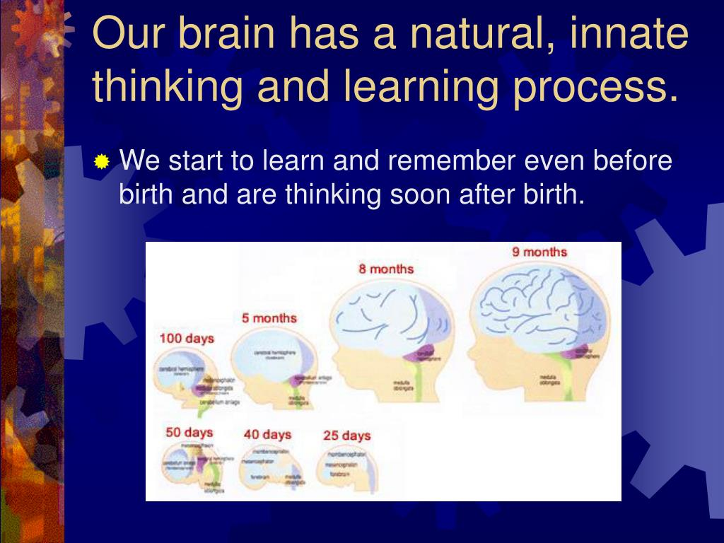 Our brain has a natural, innate thinking and learning process.