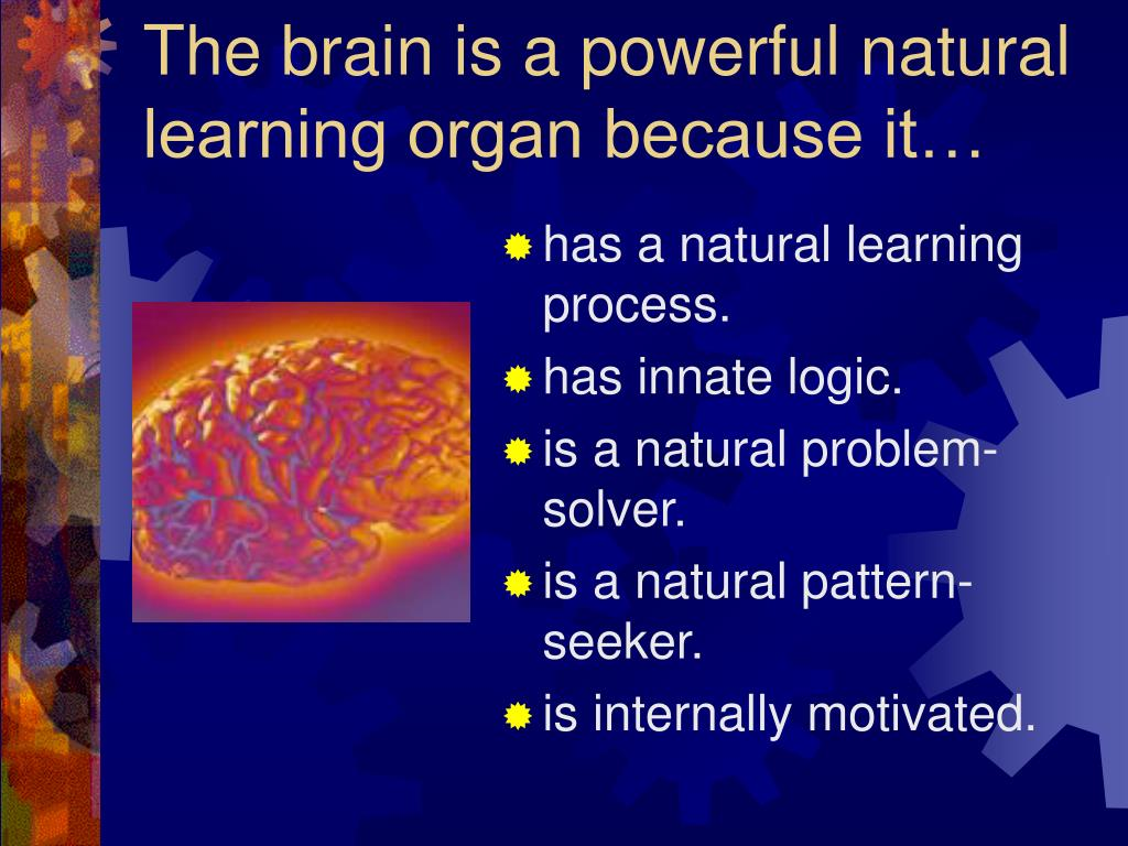 The brain is a powerful natural learning organ because it…