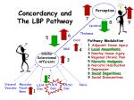 concordancy and the lbp pathway