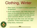 clothing winter