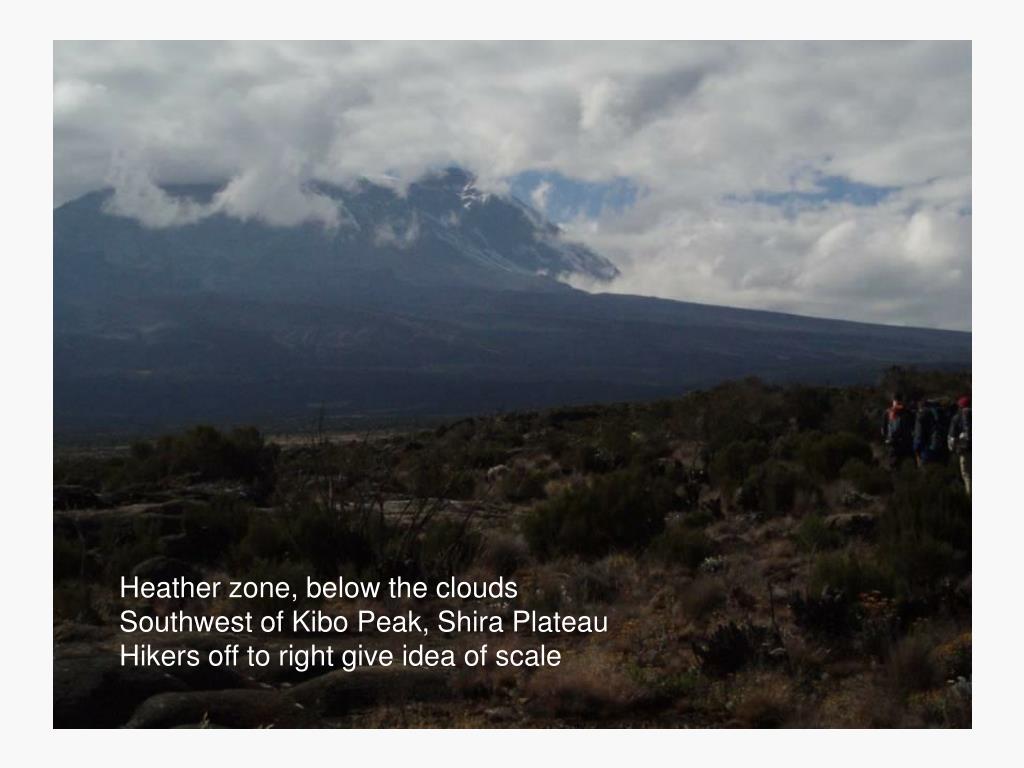 Heather zone, below the clouds
