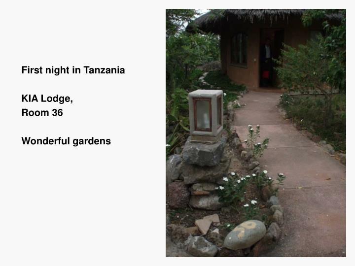 First night in Tanzania