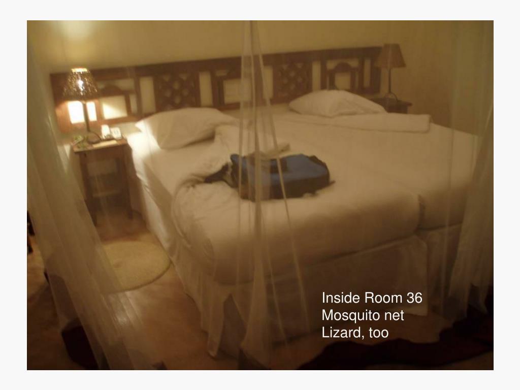 Inside Room 36
