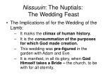 nissuuin the nuptials the wedding feast24