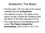 shiddukhin the match