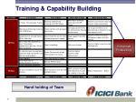 training capability building