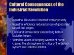 cultural consequences of the industrial revolution10