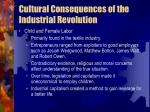 cultural consequences of the industrial revolution9