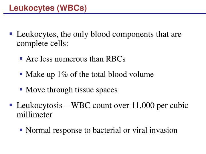 Leukocytes (WBCs)