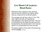 live blood cell analysis blood basics10