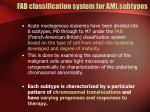 fab classification system for aml subtypes