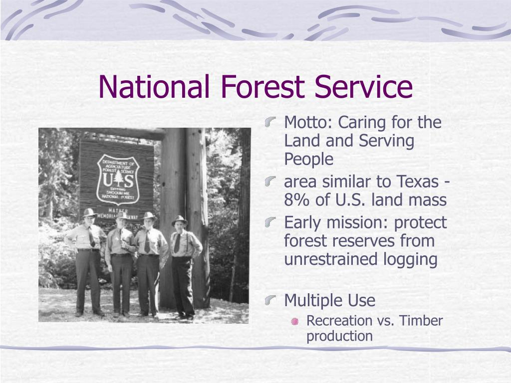 National Forest Service