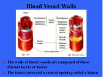blood vessel walls