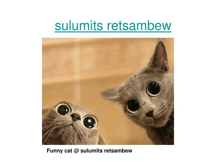 Sulumits retsambew