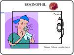 allergic processes asthma