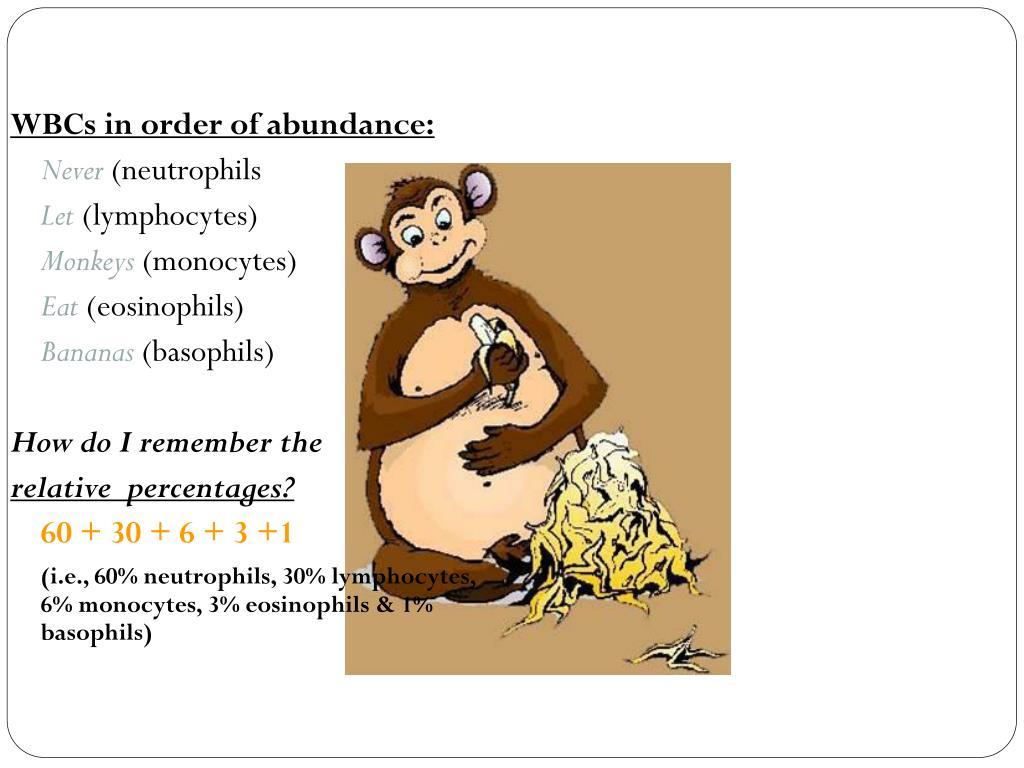 WBCs in order of abundance: