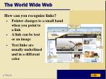 the world wide web19