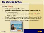 the world wide web41
